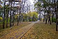 Kirovskiy rayon, Khabarovsk, Khabarovskiy kray, Russia - panoramio (118).jpg