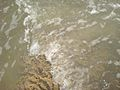 Kizhunna beach Vattakkallu 21.JPG
