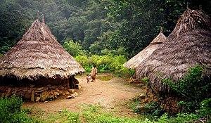 Kogi people - Kogi Huts
