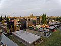 Komunalny Cmentarz Południowy w Warszawie 2011 (17).JPG
