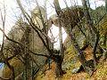Kozi Gramadi Megalithic Arc Starosel Bulgaria.jpg