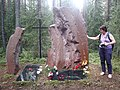 Krasny Bor, Karelia, memorial cemetery (2018-08-04) 28.jpg