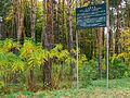 Kyiv Sovky Park21.JPG