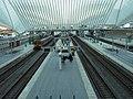Lüttich, Bahnhof Liege-Guillemins - panoramio - Ralf Houven (16).jpg