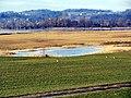 Lützelau - Frauenwinkel - Seedamm 2012-02-18 15-38-09 (SX230).JPG