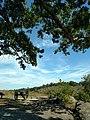 LHHV Field Trip to Gettysburg september 2016 - panoramio - Ron Shawley (3).jpg