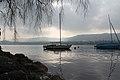 Lake Zurich - panoramio (11).jpg