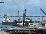 Lake freighter Walter J. McCarthy, Jr..jpg