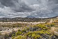 Landscape in Tongariro National Park 11.jpg