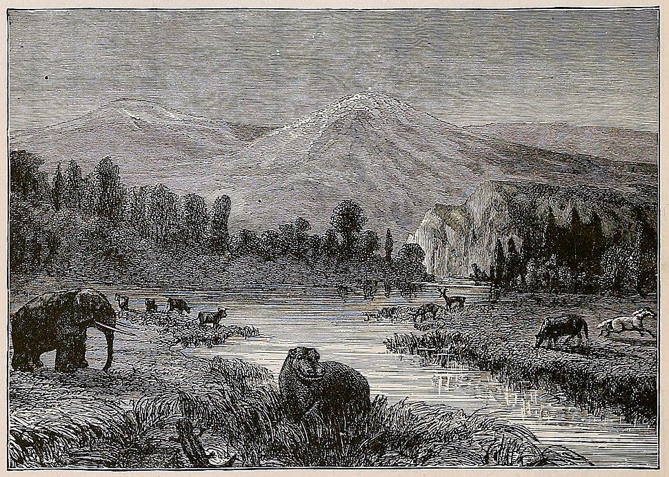 Landscape of the Pliocene epoch - showing environment at the time of men's appearance - drawn by Riou