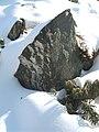 Lebenswertes chemnitz stein garten winter schnee detail 1.jpg