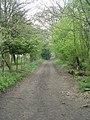 Lees Lane - Syke Lane - geograph.org.uk - 1254042.jpg