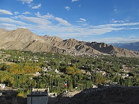 Leh City seen from Shanti Stupa.JPG