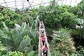Leipzig - Zoo - Gondwanaland in 40 ies.jpg