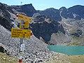 Lej dal Diavolezza - panoramio.jpg
