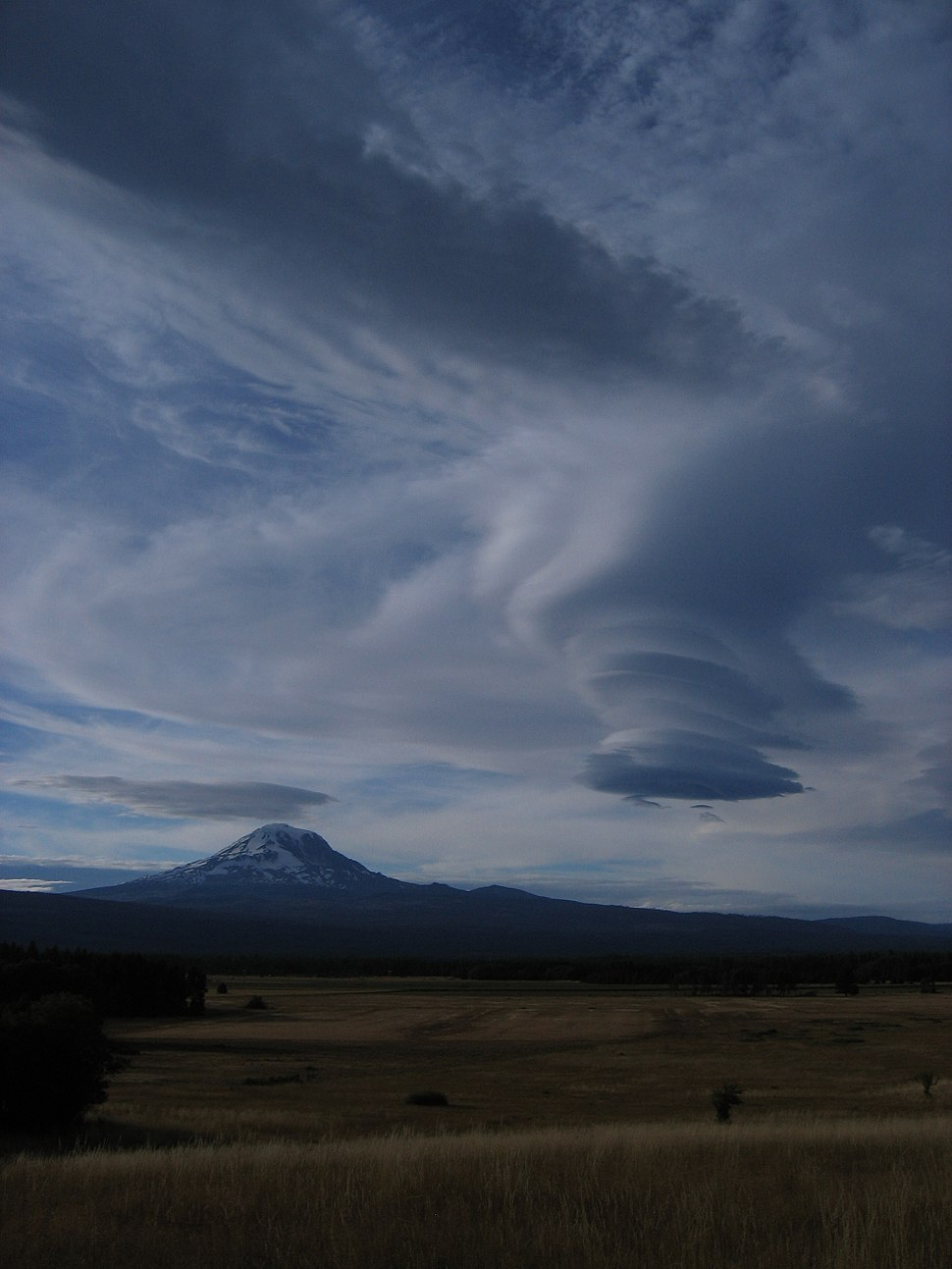 Lenticular clouds over Mount Adams (Washington)