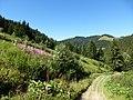 Les saisies - panoramio (19).jpg