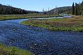 Lewis River 2014 04.JPG