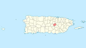 Location of Comerío in Puerto Rico