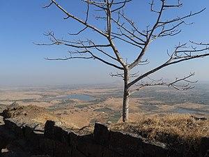 Ramsej - Image: Lone Tree at Ramshej Fort
