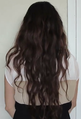 Long hair-3 (cropped).png