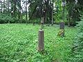 Loodi mõisa kalmistu 01.JPG