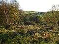Looking towards Harewood Road from Longside Moor - geograph.org.uk - 548262.jpg