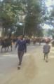 Loon Oromiyaa.png