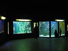 Aquarium du Grand Lyon - Wikipedia