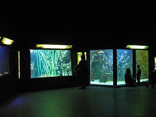 aquarium in Lyon, France