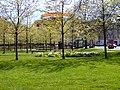 Mølleparken (maj).jpg