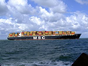 MSC Pamela p15 approaching Port of Rotterdam, Holland 29-Jul-2007.jpg