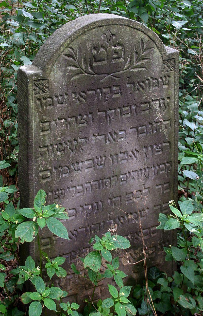 Macewa na cmentarzu żydowskim Skwierzyna 20.08.15 31pl.jpg