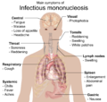 Main symptoms of Infectious mononucleosis.png