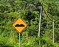 Malaysia Traffic-signs Warning-sign-18a.jpg