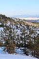 Maljen - Divčibare - zapadna Srbija - vrh Paljevine - pogled ka jugoistoku 6.jpg