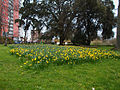 Manor Park, Sutton, Surrey, Greater London - 19.jpg