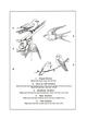 Manual of Bird Study 0020-3.png