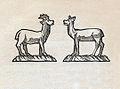 Margaret Warner Morley Donkey John 24.jpg