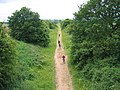 Marton Moor - geograph.org.uk - 17959.jpg