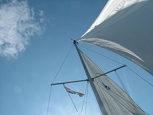 Mast (sailing) - Sails on a small ship as seen from below