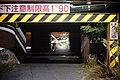 Matsumoto Night (15592796578).jpg