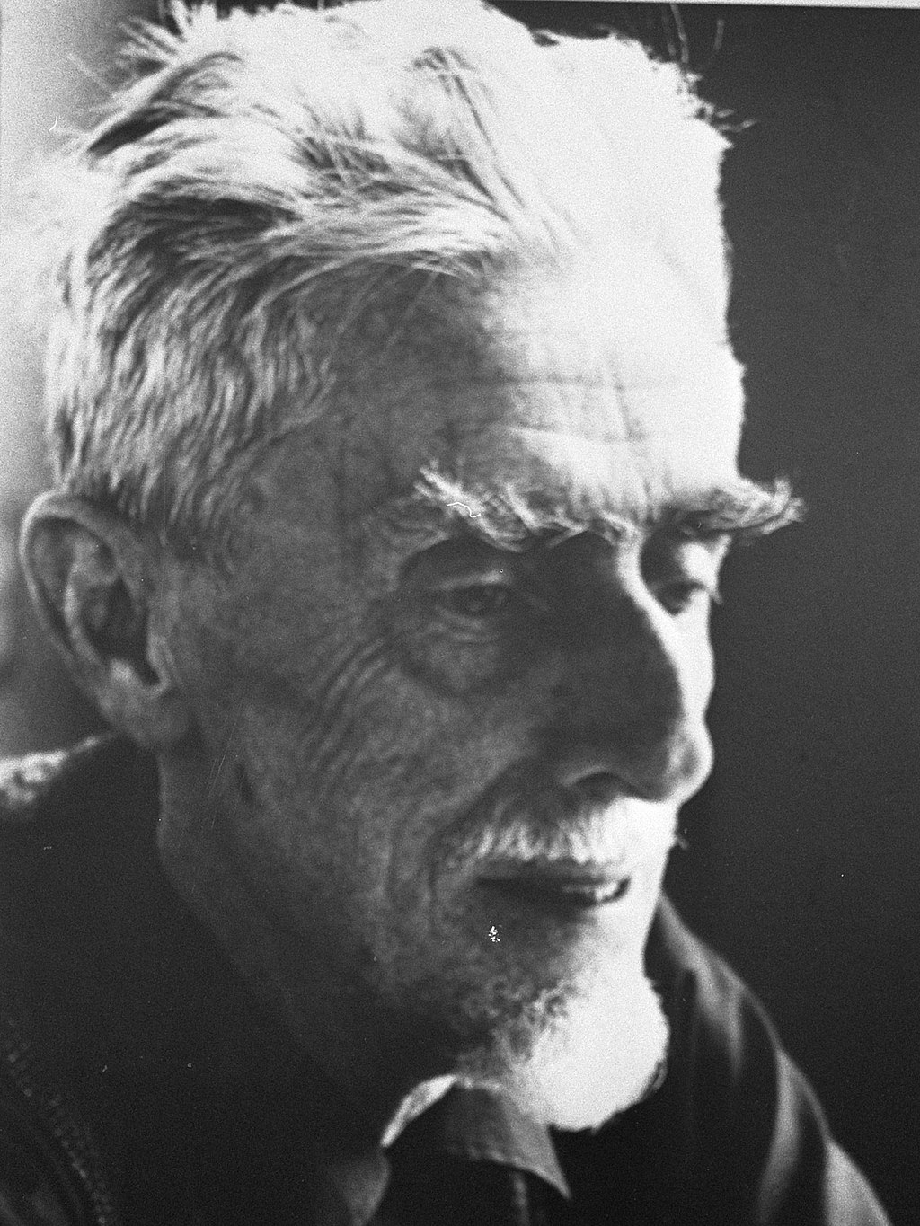 Black-and-white photograph of Escher in November 1971