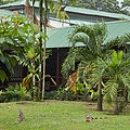 Mawamba Lodge-IMG 0858.JPG