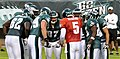 McNabb and Eagles huddle during 2009 scrimmage.jpg
