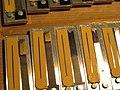 Melodeon Makers (39) Binci reeds from Castelfidardo Italy (2008-10-14 11.50.34 by Paul Johnson).jpg