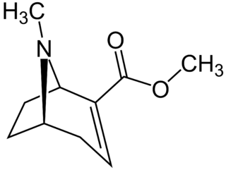 Methylecgonidine chemical compound