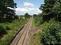 Middlesbrough to Whitby railway line near Quarry House - geograph.org.uk - 874239.jpg