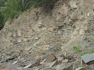 Evolution of fish - Miguasha National Park: outcrop of Devonian beds rich in fossil fish
