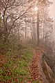 Misty North Point Trail - HDR (15667061169).jpg